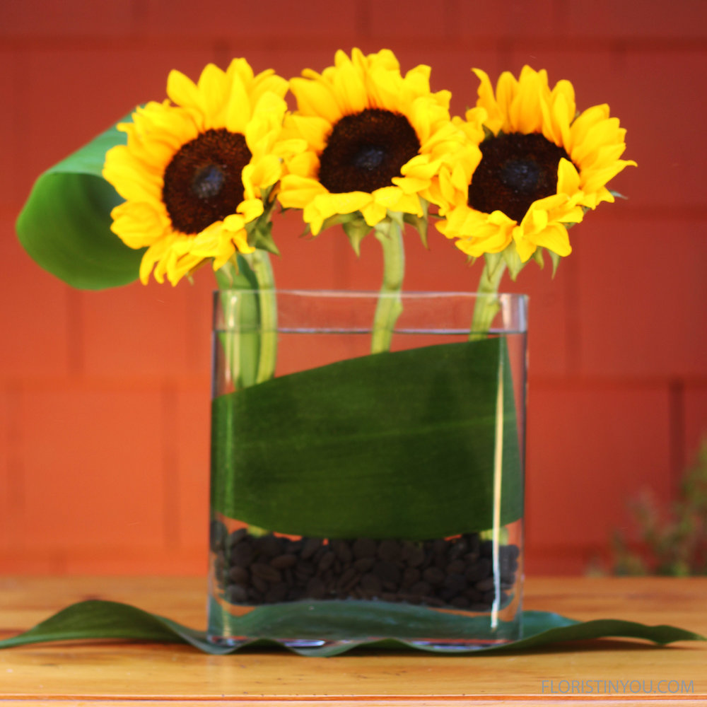 "Sunflowers in a Rounded Edge Vase                     Normal   0           false   false   false     EN-US   JA   X-NONE                                                                                                                                                                                                                                                                                                                                                                              /* Style Definitions */ table.MsoNormalTable 	{mso-style-name:""Table Normal""; 	mso-tstyle-rowband-size:0; 	mso-tstyle-colband-size:0; 	mso-style-noshow:yes; 	mso-style-priority:99; 	mso-style-parent:""""; 	mso-padding-alt:0in 5.4pt 0in 5.4pt; 	mso-para-margin:0in; 	mso-para-margin-bottom:.0001pt; 	mso-pagination:widow-orphan; 	font-size:12.0pt; 	font-family:Cambria; 	mso-ascii-font-family:Cambria; 	mso-ascii-theme-font:minor-latin; 	mso-hansi-font-family:Cambria; 	mso-hansi-theme-font:minor-latin;}"