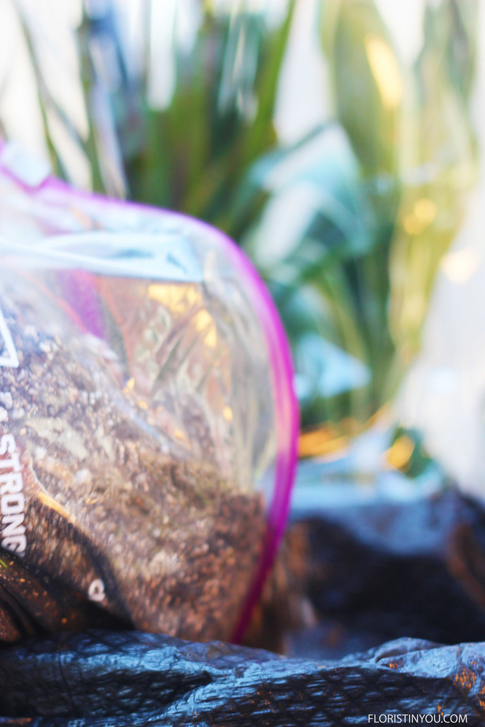 Put garbage bag in vase. Add potting mix and fill to 3/4 way to the top.