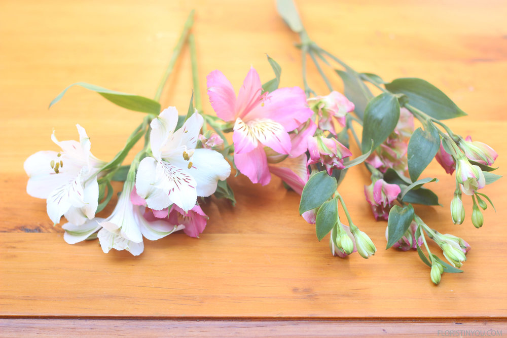 Compare: 1 pink 1 white Alstroemeria bloom on left with a stem of Charmelia on the right.