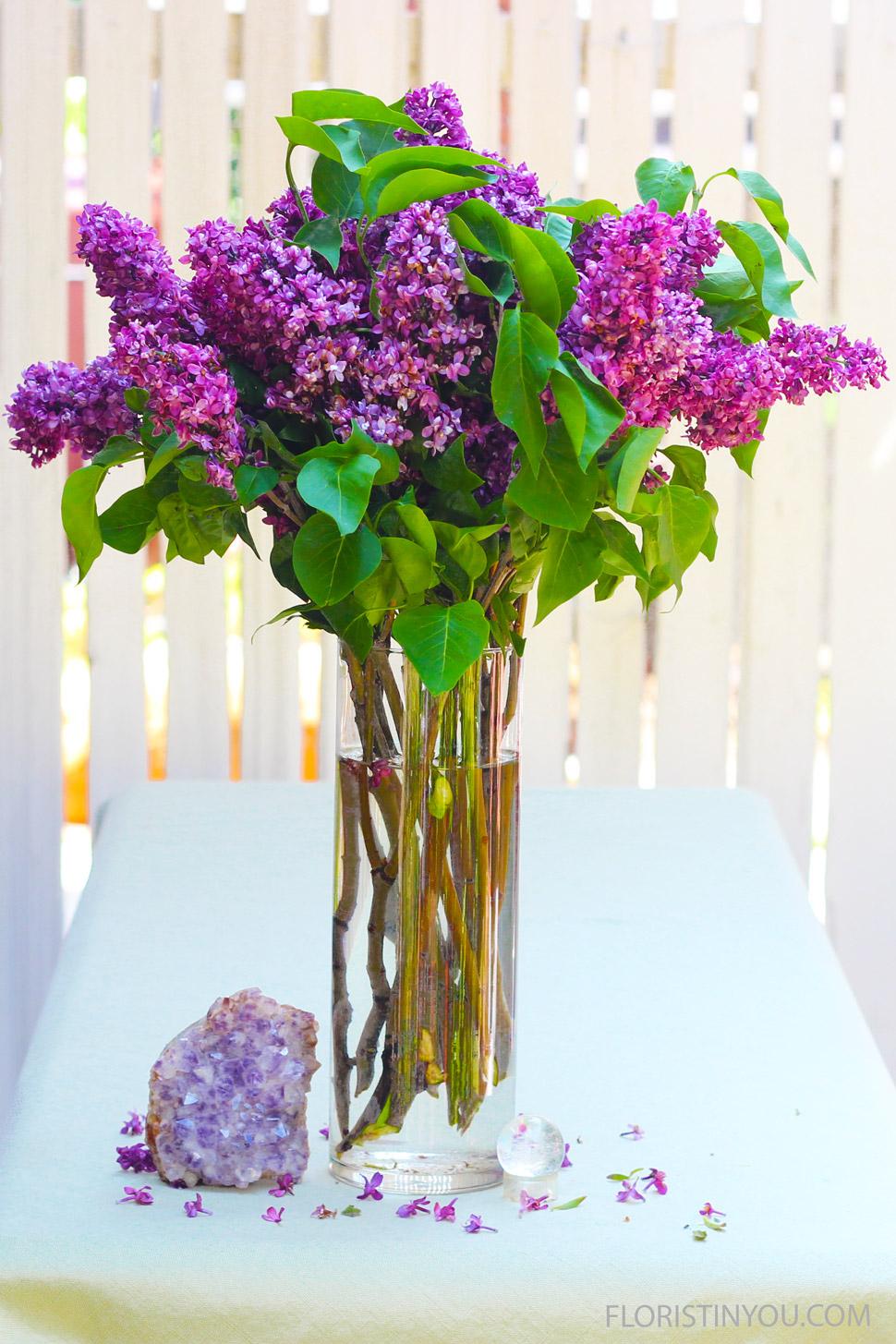 Lickety-Split Lilacs