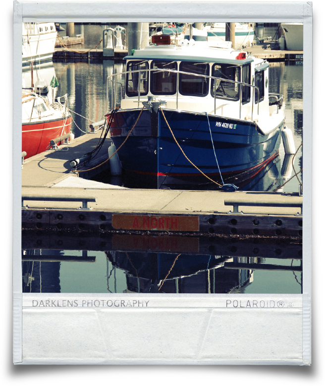 Polaroid_Blueboat.jpg
