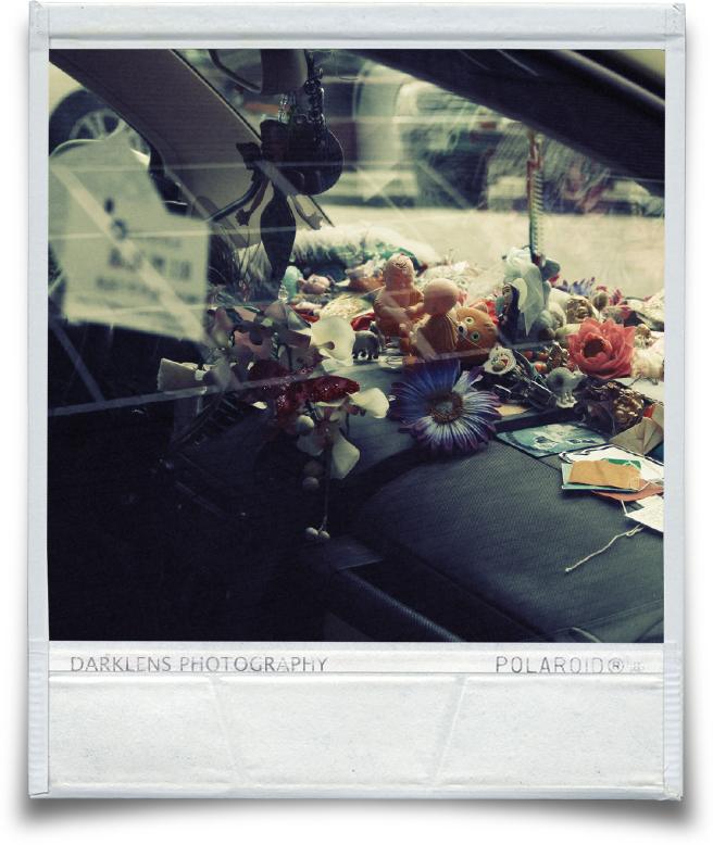 Polaroid_Dashboardflowers.jpg