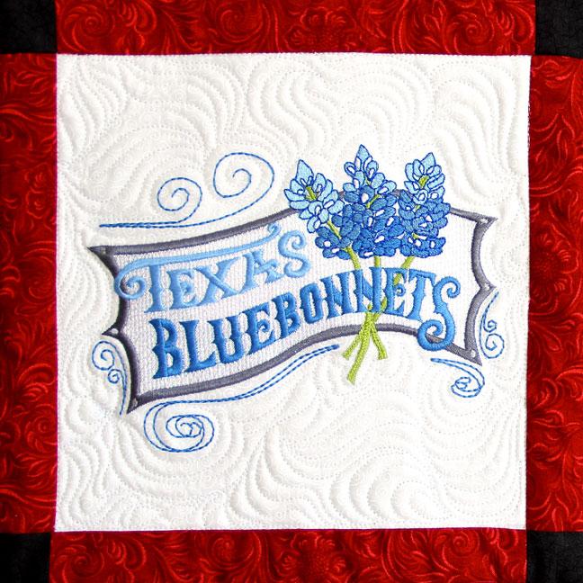 MT2TexasBluebonnets.jpg