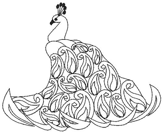 Peacock body outline - photo#9