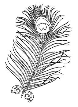 pf03-outline.jpg