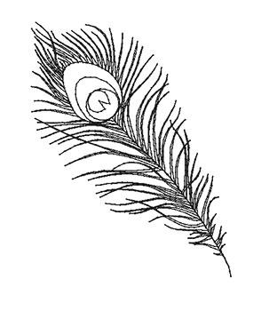 pf07-outline.jpg