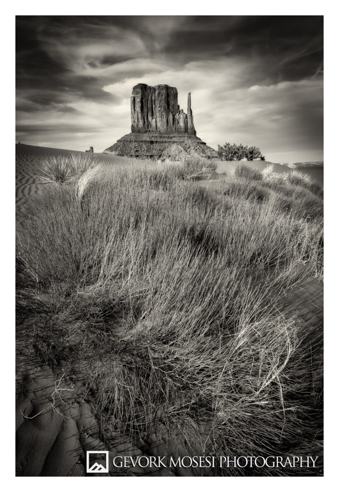 gevork_mosesi_photography_monument_valley_utah_arizona_navajo_nation_grass_black_and_white_mittens_mitten_butte_buttes-6.jpg
