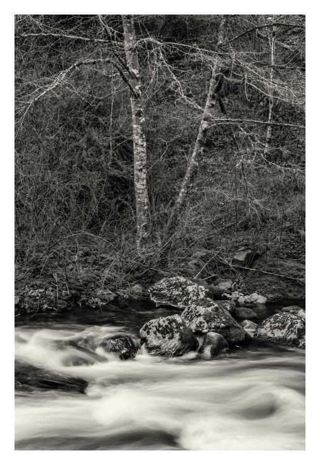 Gevork_Mosesi_oregon_columbia_gorge_waterfall_gorton_creek.jpg