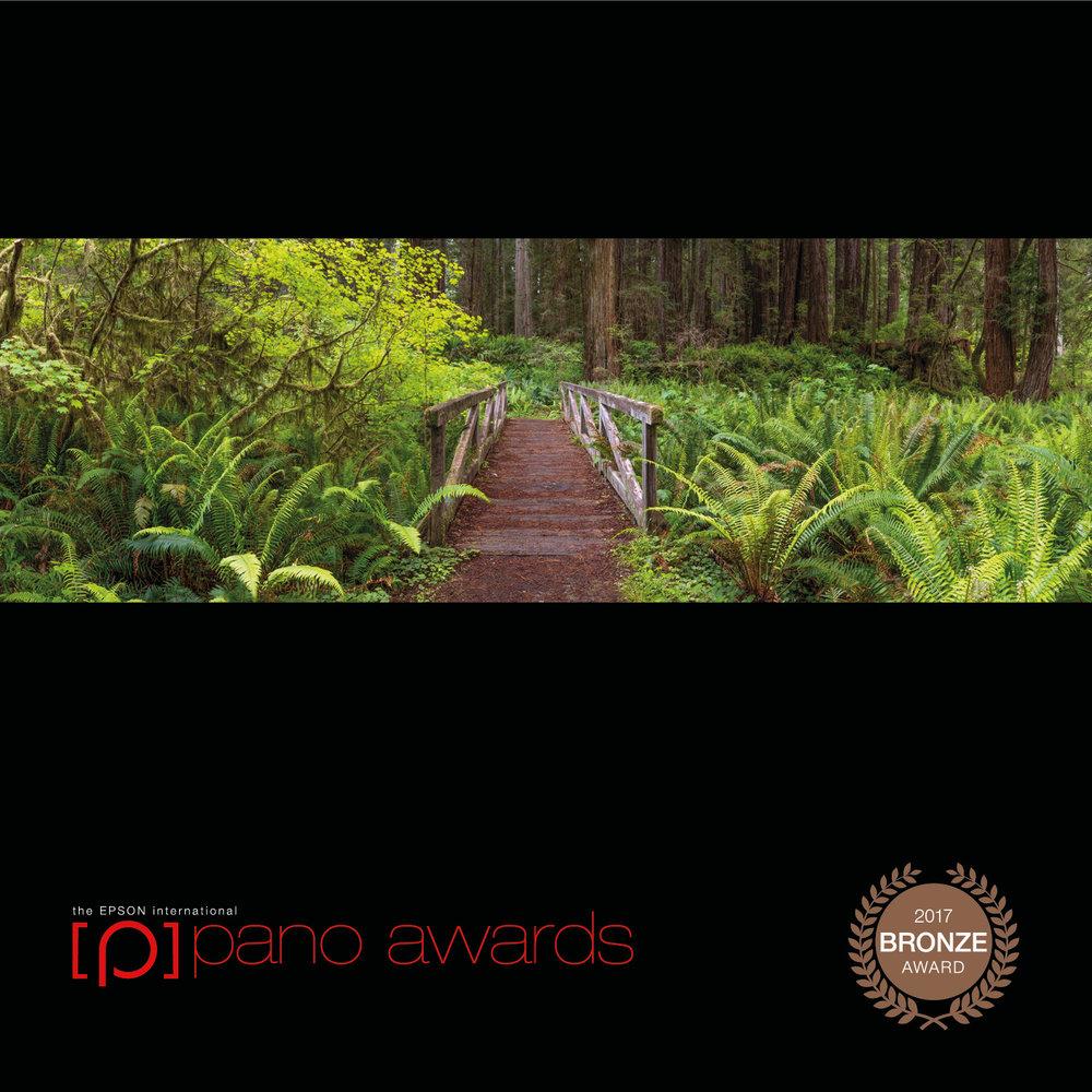 2017-Epson-Pano-Awards-Amateur-Bronze217.jpg