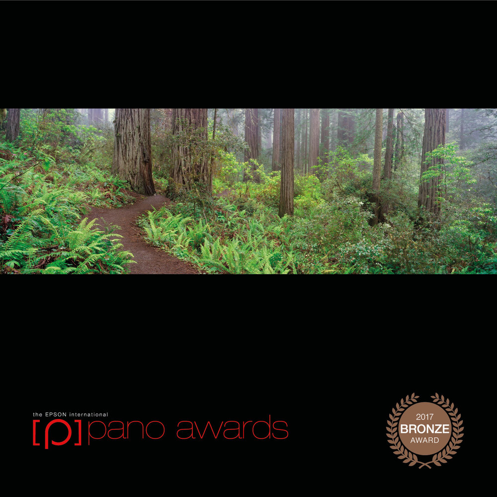 2017-Epson-Pano-Awards-Amateur-Bronze137.jpg