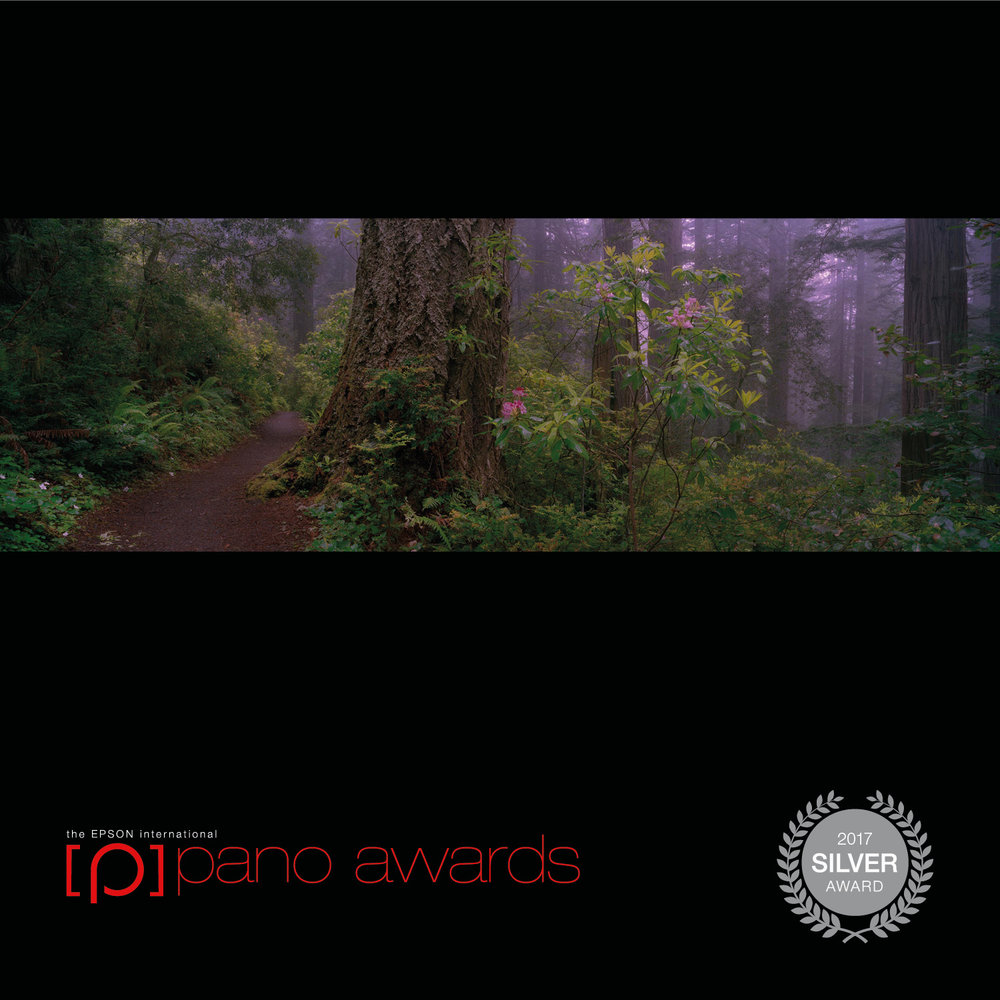 2017-Epson-Pano-Awards-Amateur-Silver228.jpg