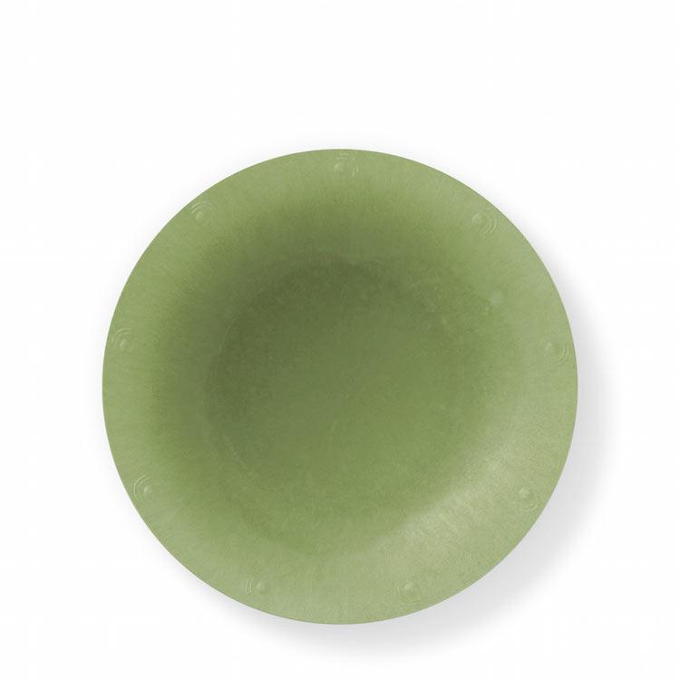 SustyParty-Bowl-Green.jpg