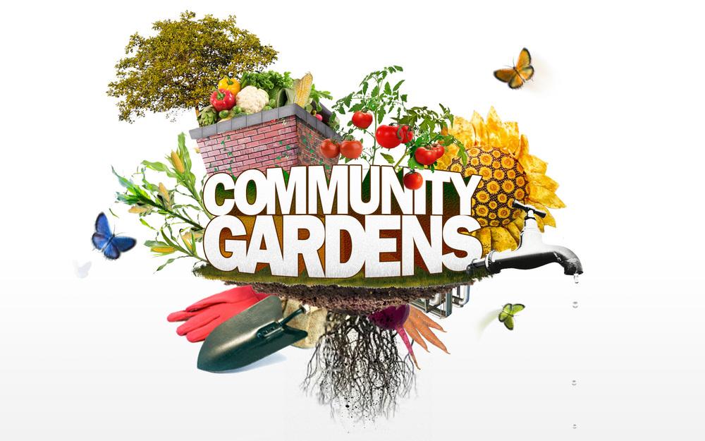 community-gardens.jpg
