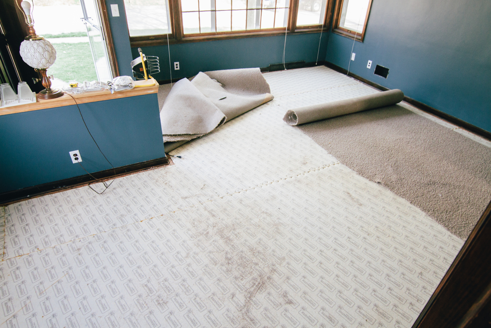 We tore up the carpet, hoping to reveal beautiful hardwood floors and we did!