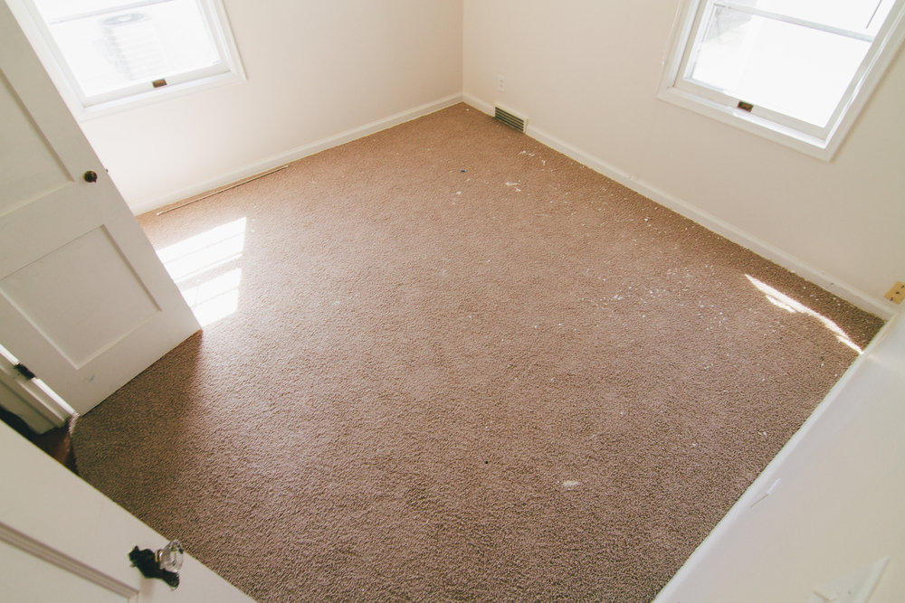 Again, carpet is a no-no.