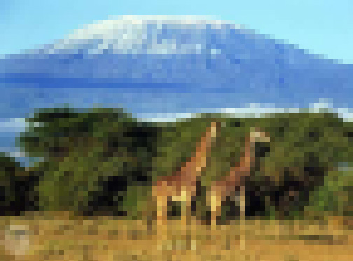 kilimanjaro Pixel.jpg