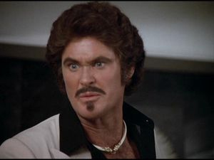 David Hasselhoff as Garthe Knight