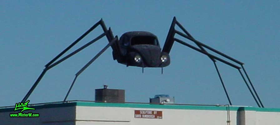 VW Bug Spider