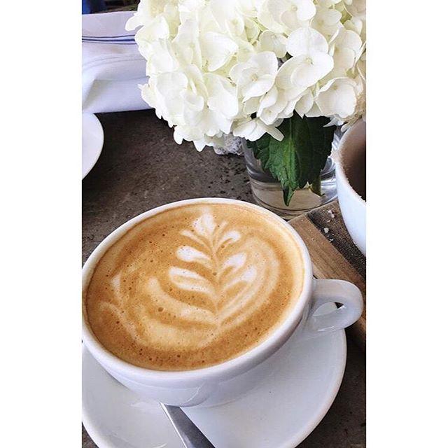 Afternoon coffee break ☕️ With a hydrangeas on the side 🌸 #coffee #coffeebreak #doseofcaffeine #cappuccino #hydrangeas #flowers #tgif #friday #wvf #dubai