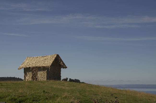 sheep-hut-for-web.jpg