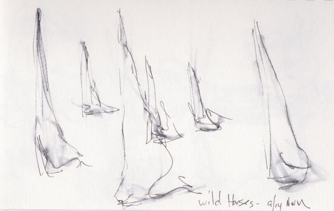 Windscape Wild 'Horses.JPG