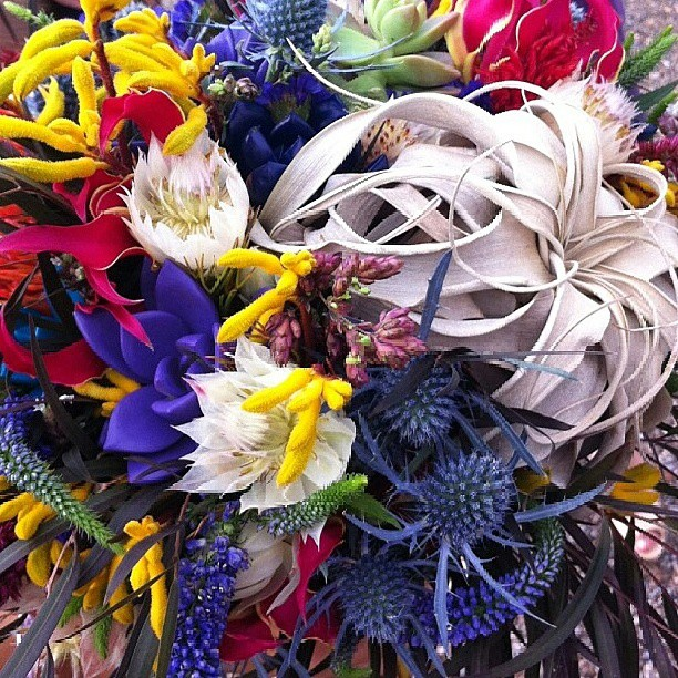 Close up shot of Erin's bouquet.