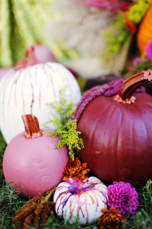 Thanksgiving courtney-Thanksgiving courtney-0005.jpg