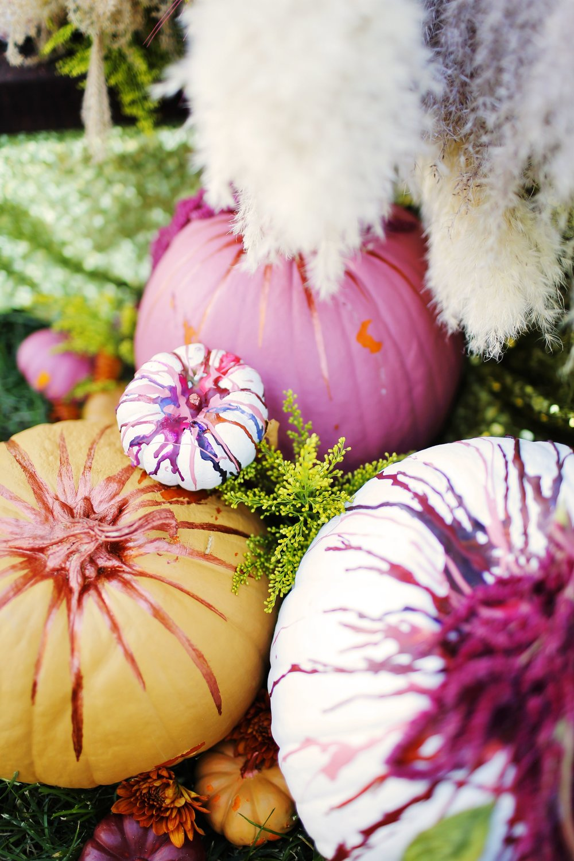 Thanksgiving courtney-Thanksgiving courtney-0015.jpg