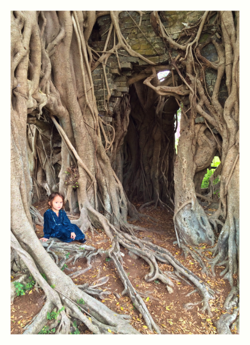 doorway to the Q'ing period study hall now consumed by a banyan tree in Kam Tin, New Territories, Hong Kong. the small child, ancestral to the village but not autochthonous, wandered into the shot by chance as the author tried to photograph the Tree House. (photo by K. Holmberg).