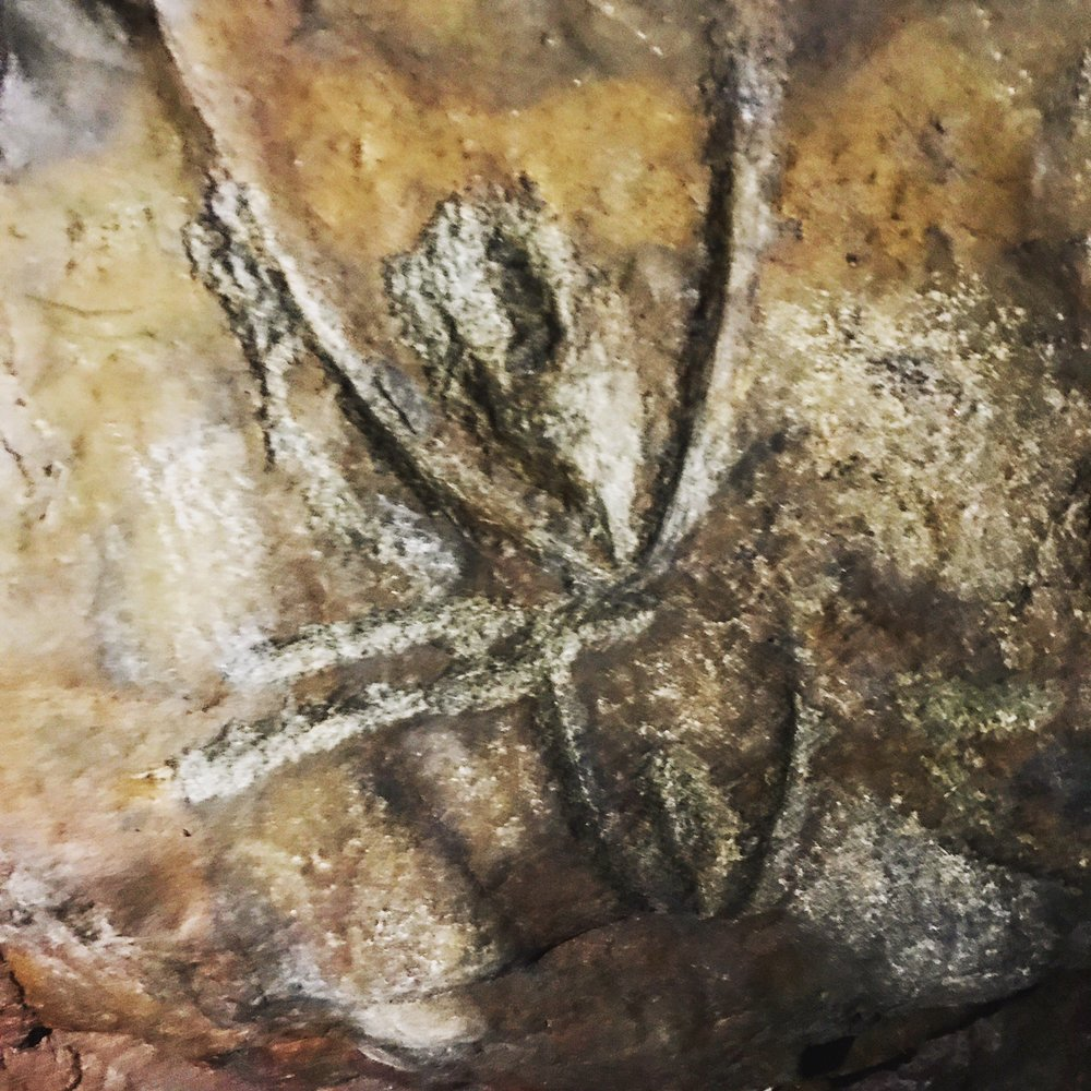 - an example of incised rock art within the caves