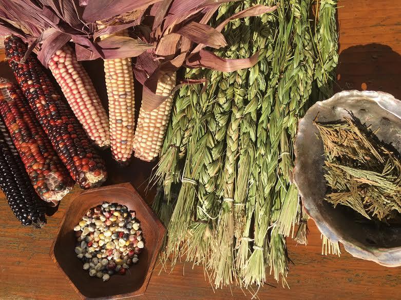 garden medicine.jpg