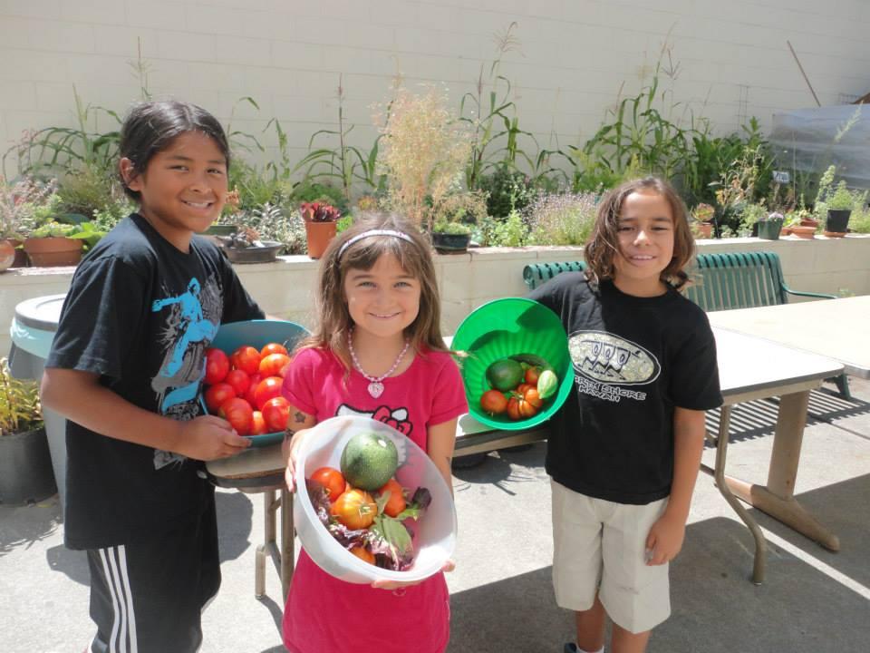 garden produce 2.jpg