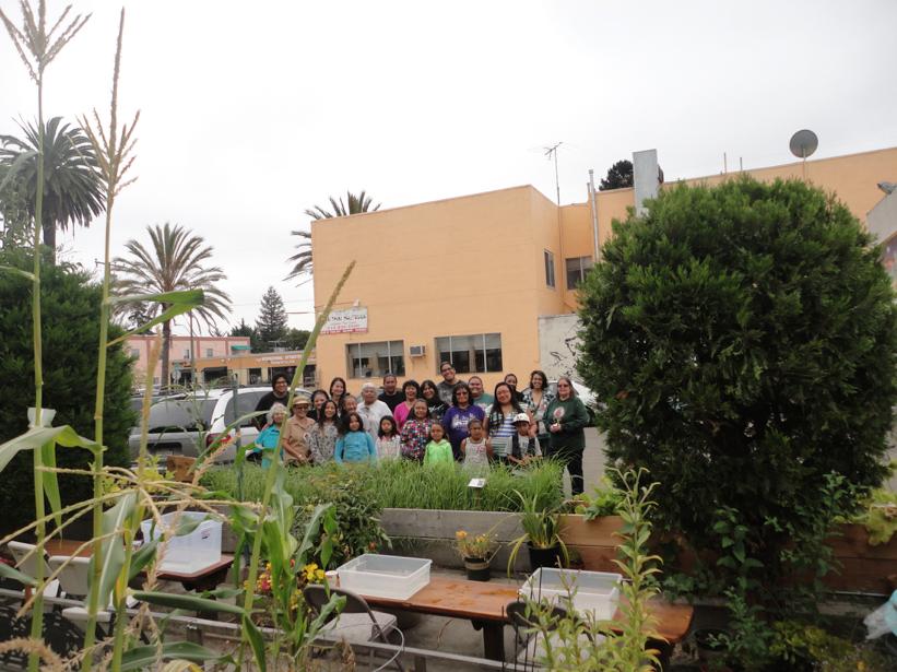 urban garden.png