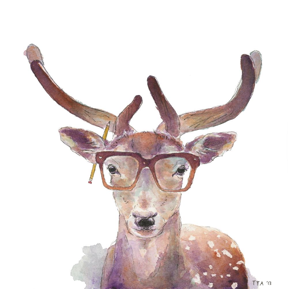 Study Deer