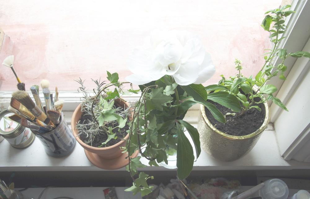 flowerstudio3.jpg