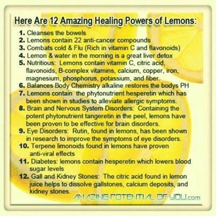 the lemon.jpg