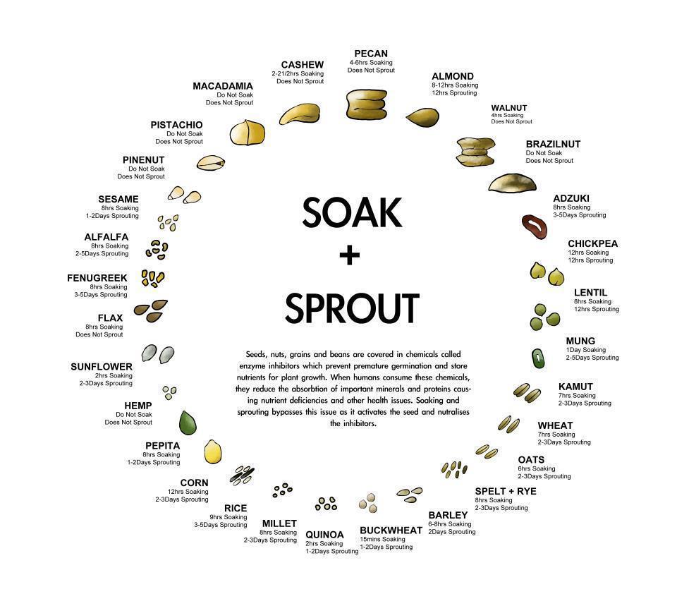 soak_nuts chart.jpg