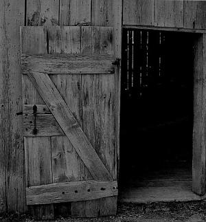 shed-door.jpg