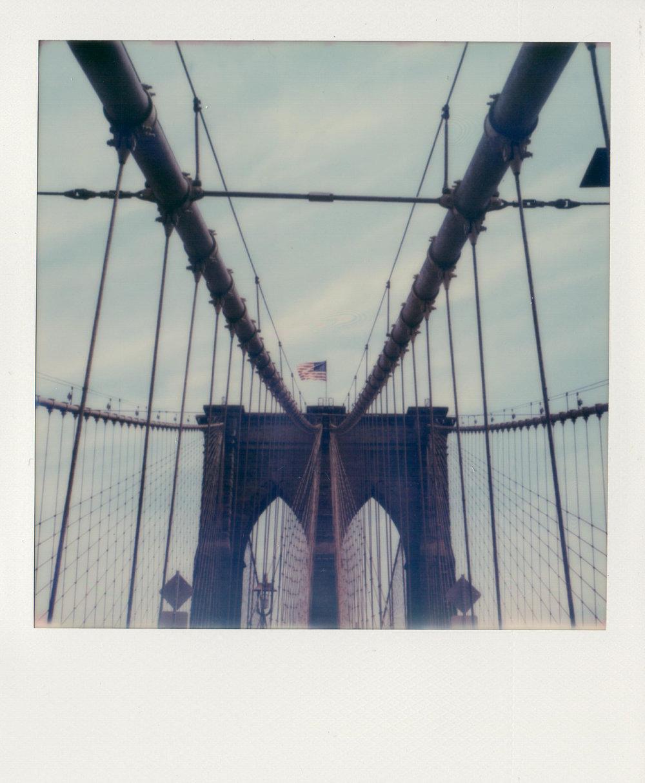 SX-70_Polaroids-7.jpg