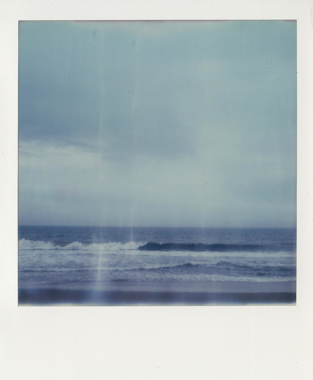 SX-70_Polaroids-10.jpg