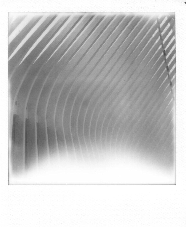 SX-70_Polaroids-26.jpg