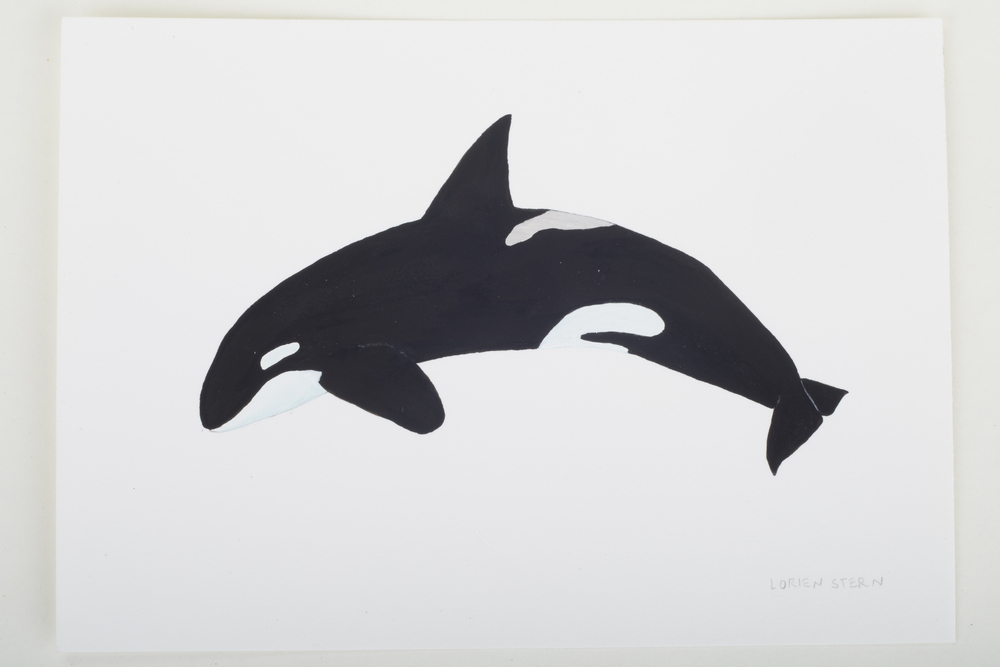 "Orca 2015- 5"" x 7"". Gouache on 100% cotton acid free Stonehenge Paper"