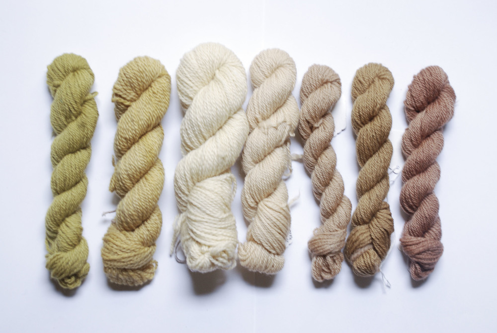 """First up - a new dyeing class - """"25 colours from one pot""""."""