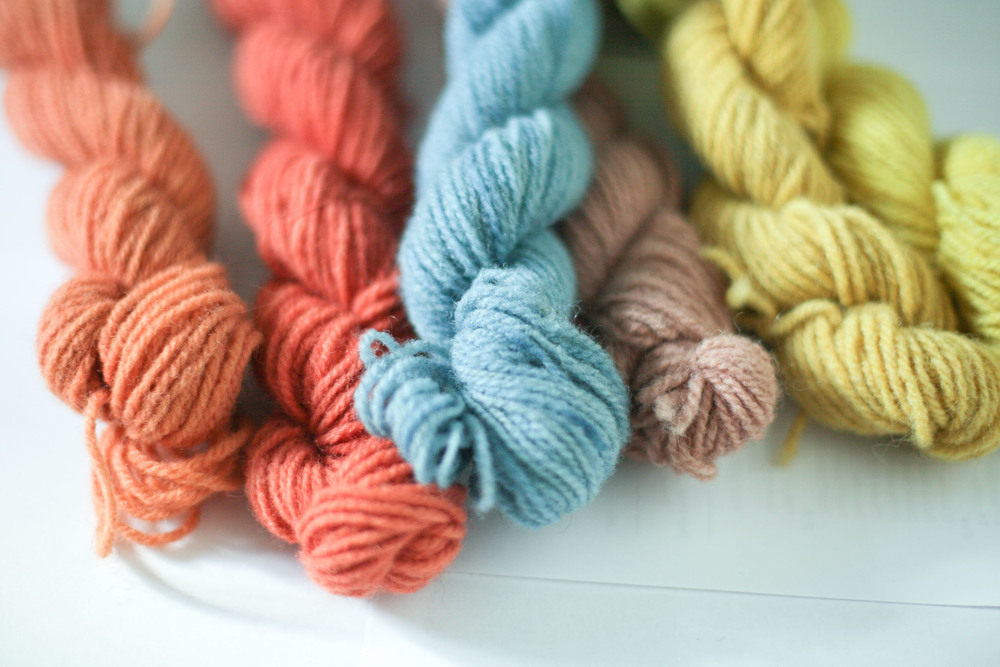 Perfectly complementary naturally dyed yarn in Madder, Woad, Goat's Willow and Dyers Camomile.