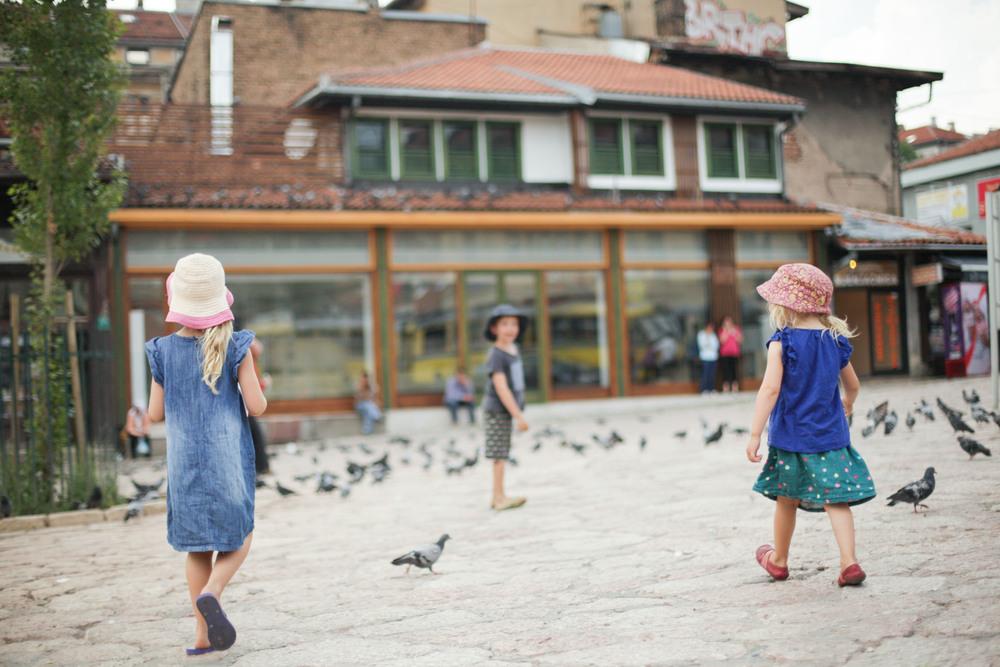 Pigeon heaven.