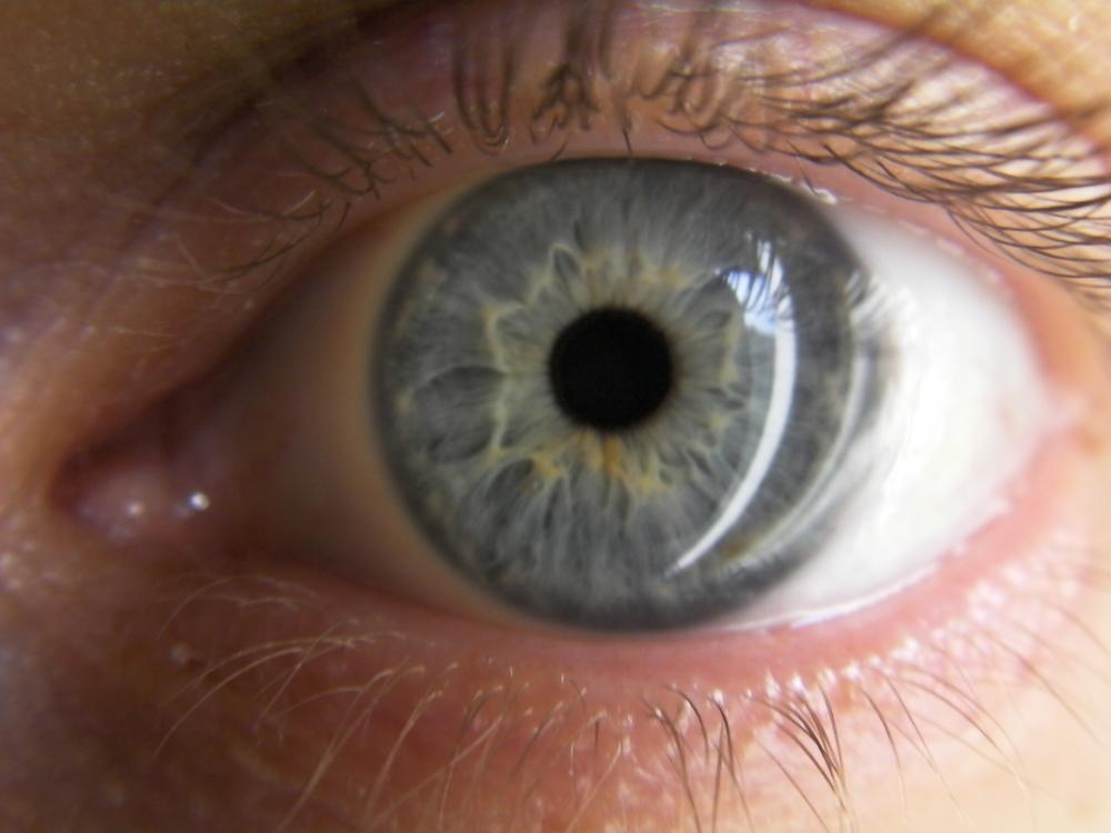 Blue Eye.JPG