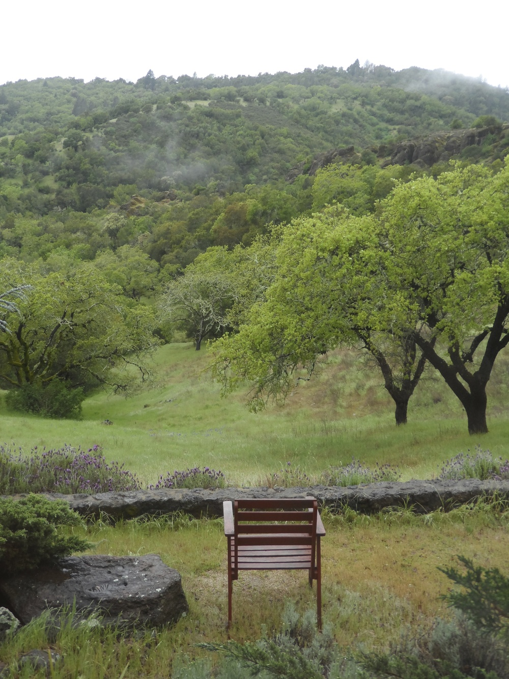 A single chair to observe from, at Sky Farm Hermitage