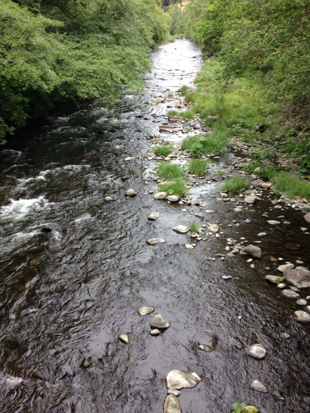 Dunsmuir Sacromento River.JPG