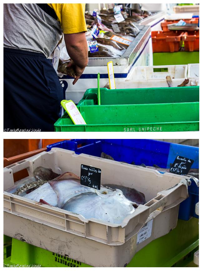 boulogne fish.jpg