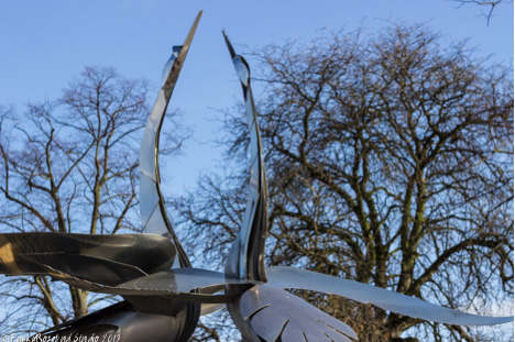 srtatford swans.jpg